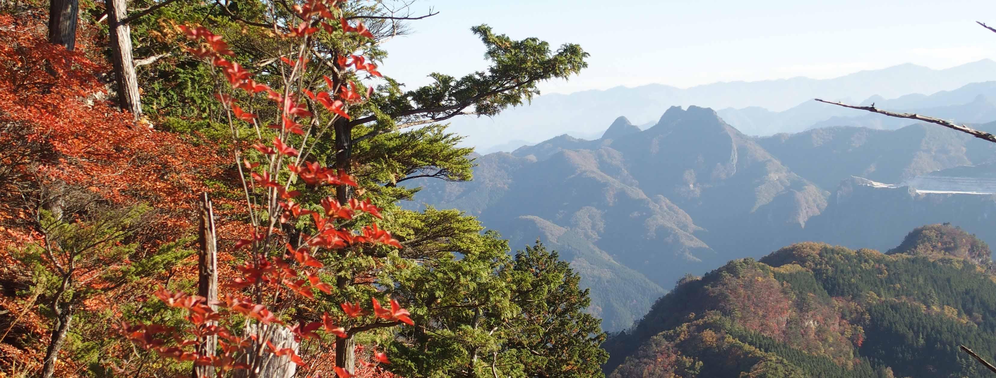 紅葉と二子山